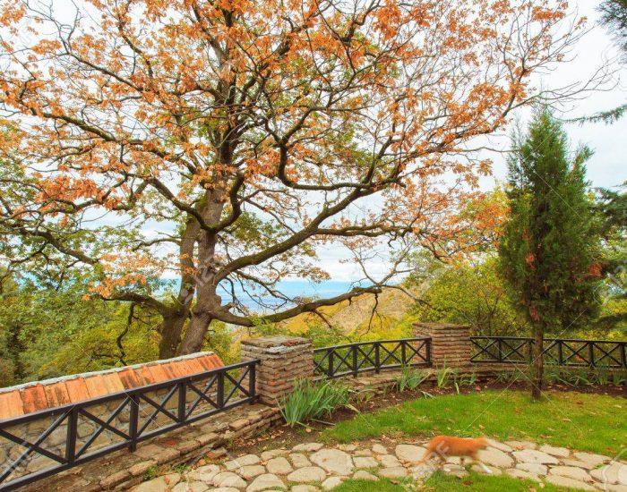فصل پاییز درکشور گرجستان
