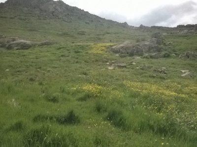 طبیعت زیبای روستای طارم قزوین