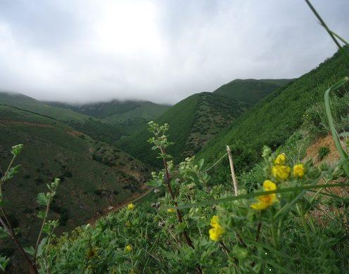 طبیعت روستای آستمال آذربایجان شرقی