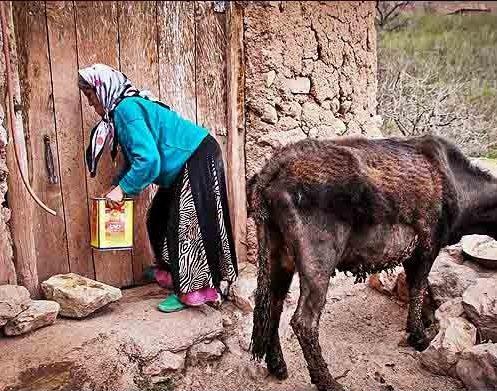 مردم میهمان نواز روستای اکوجان